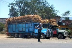 Pobreza-en-el-campo-cañero-Los-Reyes-