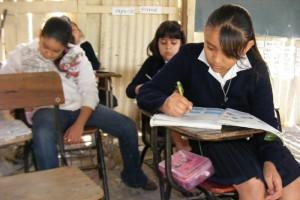 Uruapan-Aún-hay-escuelas-de-paitos-2